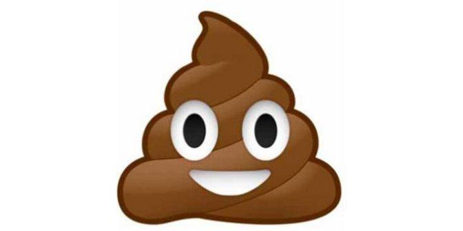 The Poop Metaphore